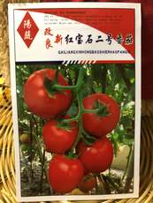 Yangshuo new improved ruby ​​No. 2 tomato seed