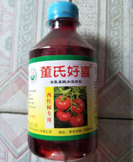 Persimmon tomato tomato cherry fruit flower pollination powder Dong's good hi stained anthel