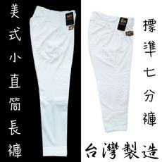 ZETT American Baseball Pants Small Straight Baseball Pants Trousers Taiwan White Reinforced Baseball Pants Specials