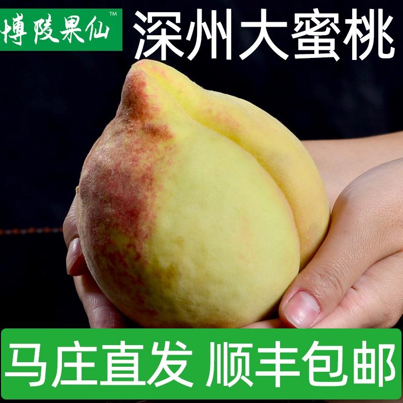 河北深州大蜜桃特产顺丰桃水果桃子礼盒新鲜6个深州蜜桃博陵果仙