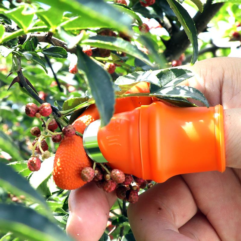 摘花椒神器采摘豆角茶叶专用手套指掐葡萄尖菜心农用铁指甲拇指刀
