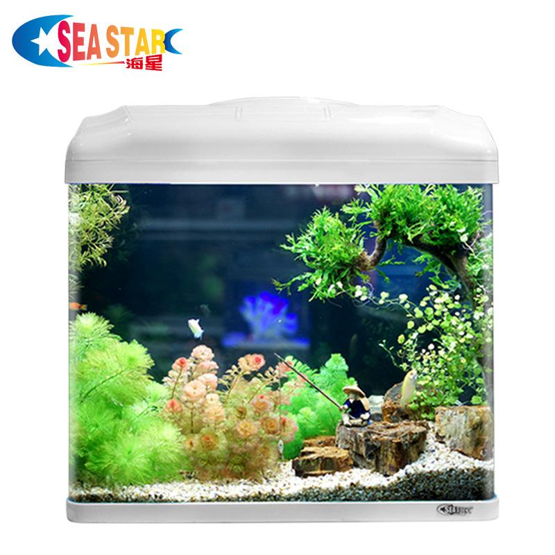 海星鱼缸水族箱生态创意鱼缸客厅小型迷你玻璃桌面家用金鱼缸懒人