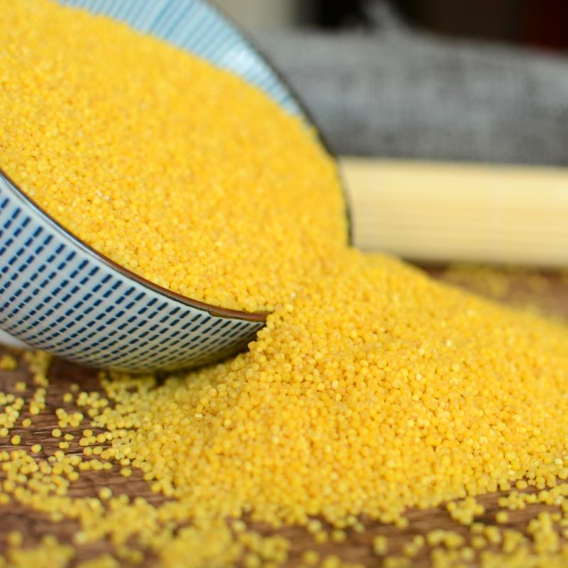 陕北米脂小米400g*5  农家黄小米 坐月子宝宝辅食