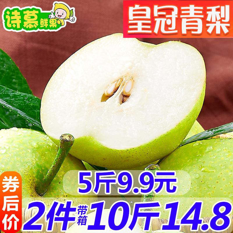 砀山青梨梨子新鲜水果 皇冠梨酥梨新鲜水果当季现摘现发带箱5斤
