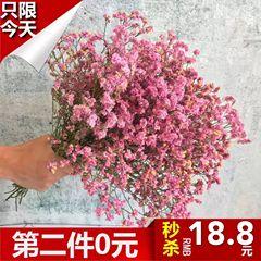 天然勿忘我新鲜花干花永生花束云南低价散装干树枝混合式客厅花艺