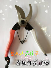 Authentic old famous brand Wangershan fruit tree scissors Pruning shears Gardening scissors labor-saving scissors thick branch shears pruning shears