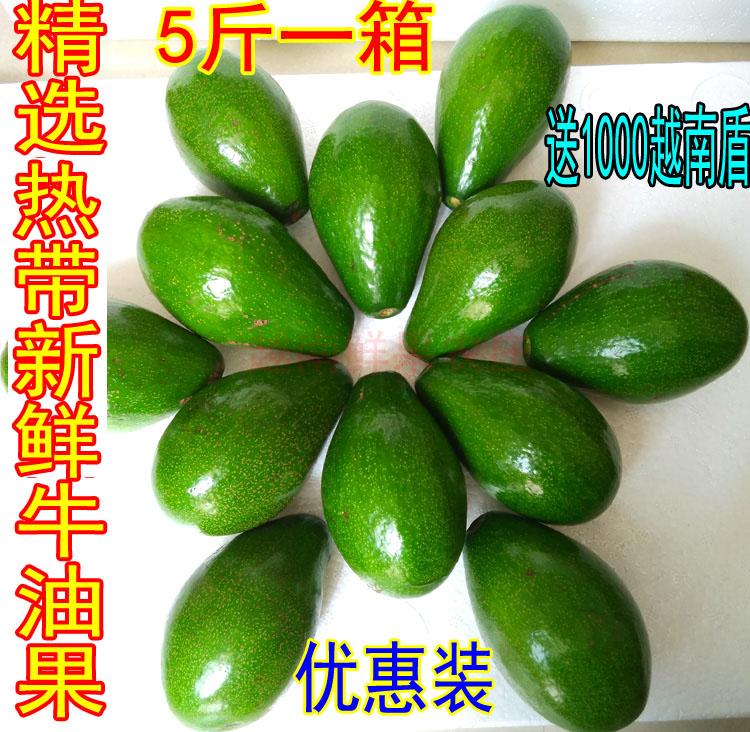 巨无霸牛油果热带新鲜水果非墨西哥鳄梨宝宝孕妇营养水果五斤包邮