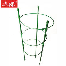 49 flower props flower stand bundled vine shelf green lunar rose graft wrought iron support rod multi-layer bracket column