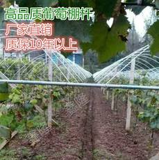 New vegetable and fruit frost-proof arch shed bracket pole grape shed accessories fiber steel rod solid elastic rod