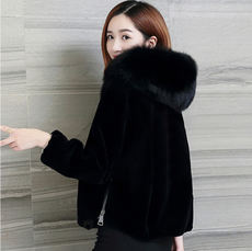 Special treatment Haining imitation sheep shearing hooded coat short Korean version of the new imitation fox fur collar fur coat female