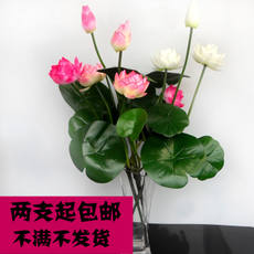 Lotus Lotus for Simulation Buddha Decoration Lotus Artificial Flower Plastic Flower Dance Decoration Lotus