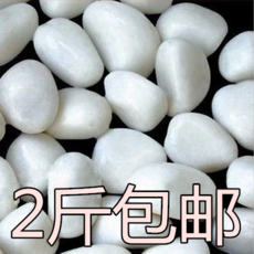 Pure white pebbles white colored stones oval shaped paving pots decorated fish tanks