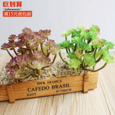 Simulation succulent potted artificial fake green plant green indoor living room decoration flower and flower office