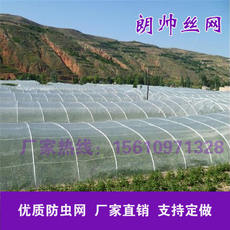 Special insect-proof and anti-mite net for greenhouses Nylon filter net 40 mesh 60 mesh 80 mesh 100 mesh vegetable fruit tree bird net