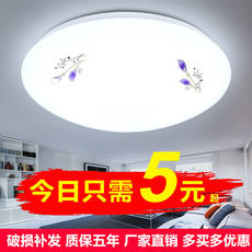 LED round ceiling lamp Bedroom lamp living room balcony lamp kitchen and aisle lights modern minimalist corridor lily lamps