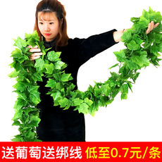 Simulation grape leaf fake flower rattan green plant ceiling decoration tree leaves winding water pipe plastic leafy vine