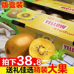 四川蒲江黄心猕猴桃原装版盒年货礼盒装新鲜水果奇异果大果