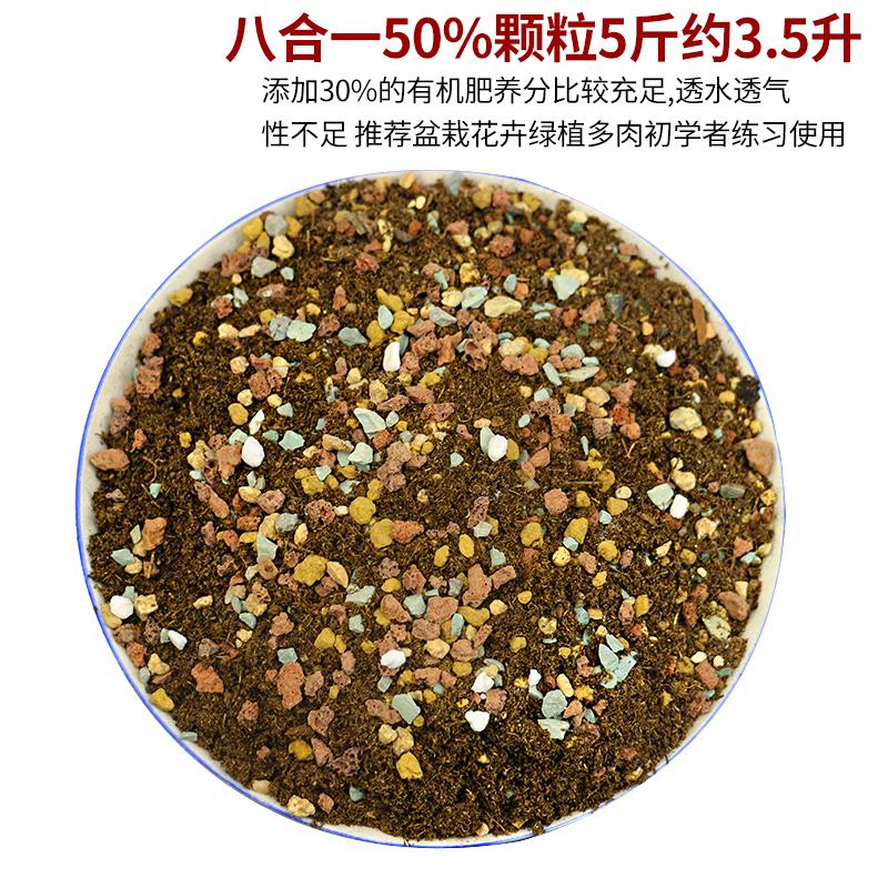 多肉植物专用营养土进口泥炭通用土肉肉叶插种植土多肉颗粒土包邮