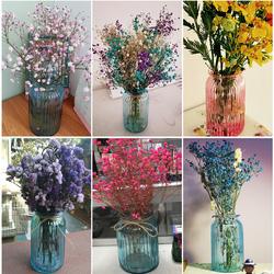 创意花瓶摆件欧式家居玻璃花瓶客厅透明绿萝水培植物富贵竹插花瓶