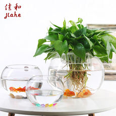 Large glass hydroponic plant flowerpot office desktop water green 箩 copper money grass vase round transparent fish tank