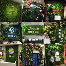 Simulation plant wall green plant encryption artificial lawn carpet wall living room fake green background wall decoration wall hanging door