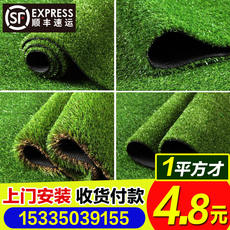 Simulation lawn artificial turf artificial turf plastic fake lawn kindergarten school decoration encryption green carpet