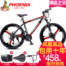 Phoenix bicycle moun...