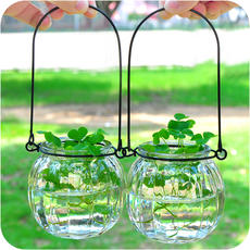 Creative hanging transparent glass vase pumpkin small bottle simple hydroponic flowerpot indoor gardening home decor