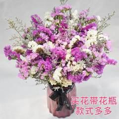 云南紫色蓝色餐厅毕业干花勿忘我和满天星组合带花瓶摄影工艺花朵
