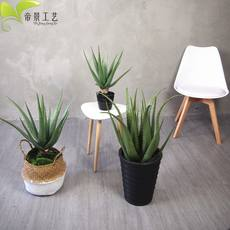 High imitation Western European style simple simulation plant size aloe vera decoration floor decoration artificial potted European American
