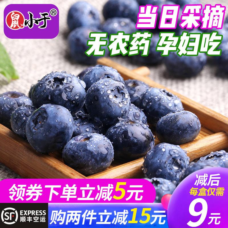 蓝莓鲜果大 东北新鲜露天无农药现摘当季水果孕妇4盒500g顺丰包邮