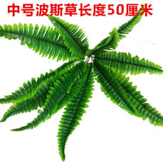 Simulation turf artificial turf plant wall green plant wall hanging fake flower Persian grass Ivy zealand gladiolus fern