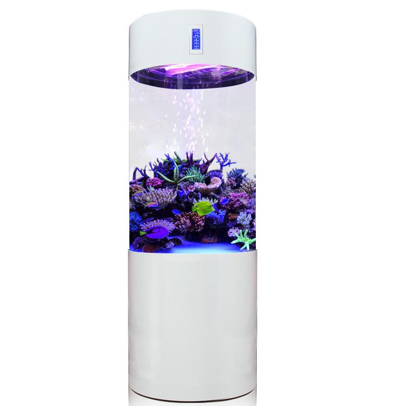 迪顺圆柱鱼缸水族箱客厅中小型家用生态亚克力免换水圆形鱼缸底滤