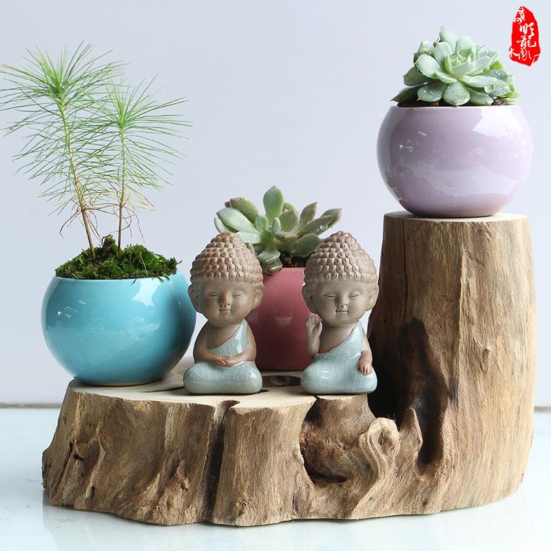 实木垫子小树登天然随型底座陶瓷摆件原木花盆架乌龟爬宠物晒台