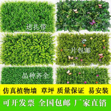 Li Jie Simulation plant wall lawn decoration carpet fake turf indoor wall decoration balcony simulation lawn