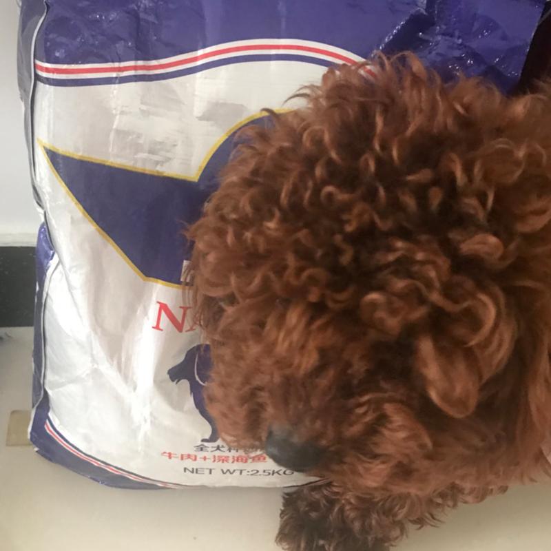 比熊2.5kg果蔬味泰迪通用型中型犬金毛主粮太低狗食物狗粮幼犬