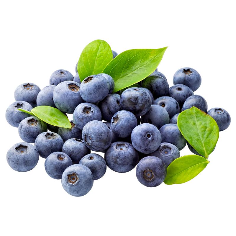 现摘蓝莓新鲜水果8盒*125g个大 儿童孕妇辅食 蓝莓鲜果批发包邮