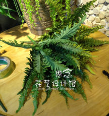High simulation kidney fern simulation fern grass simulation persian grass fern wall decorative potted simulation leaves