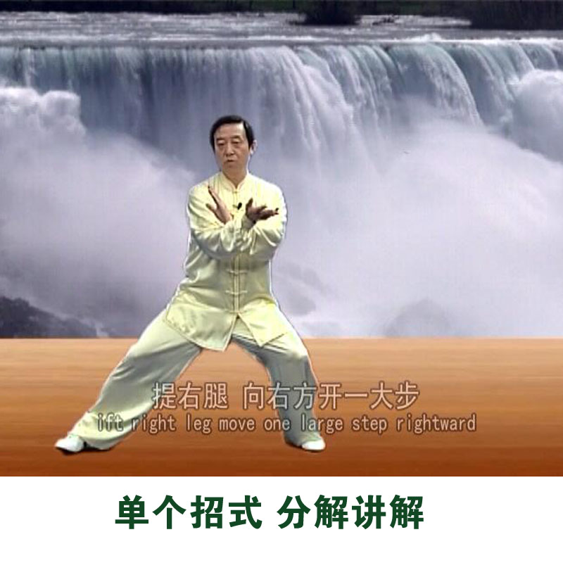 陈正雷陈式太极拳老架一路74式教学视频光盘陈氏初学者自学教程