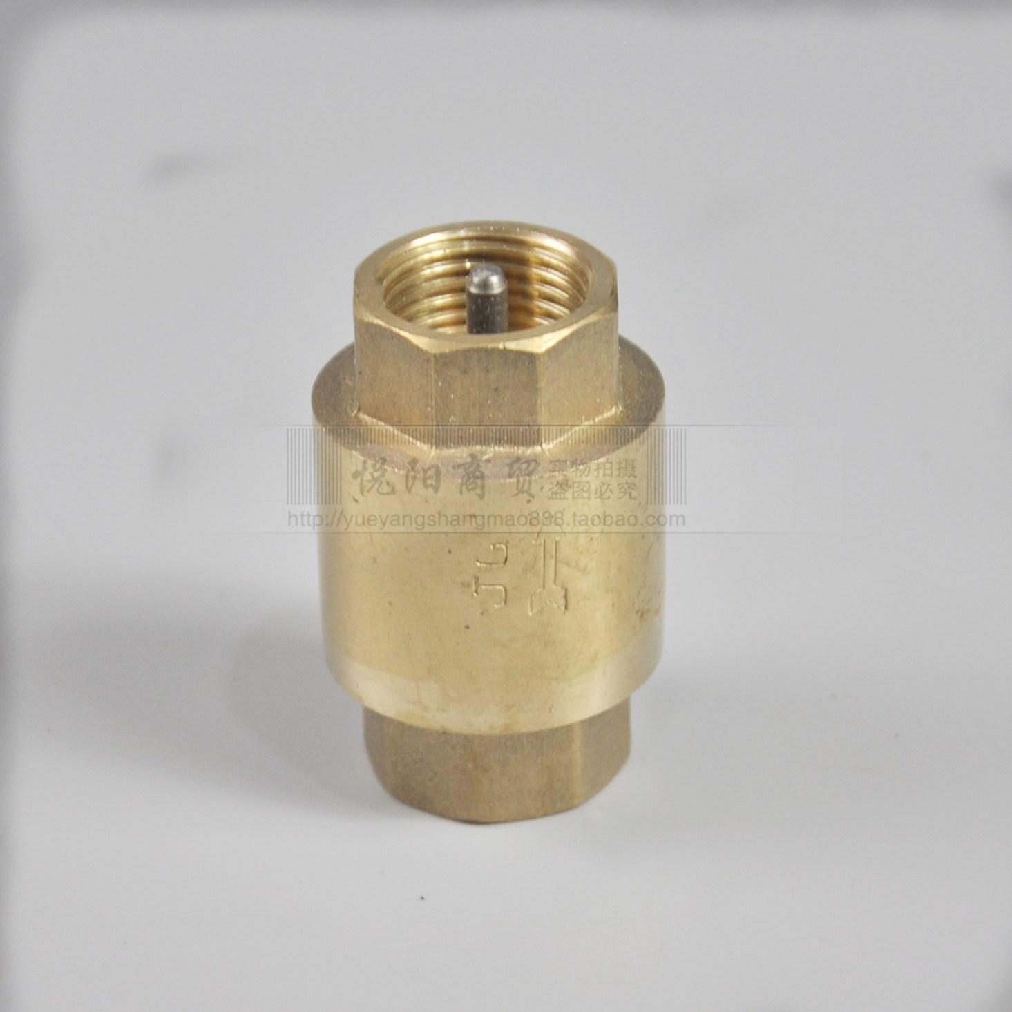 蒸汽发生器配件止回阀立式高温防回水阀止逆水阀自维阀图片