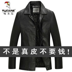 Woodpecker Haining leather leather men's sheep leather jacket men's new middle-aged daddy jacket plus cotton thickening