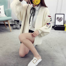 2017 new autumn lantern sleeve embroidery loose cardigan short paragraph spring and autumn embroidery sweater coat female sweater tide