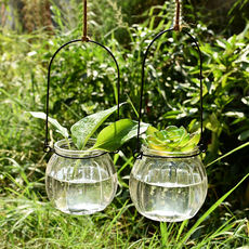 Hanging transparent glass vase Small pumpkin hanging bottle Simple hydroponic flower indoor gardening home decoration bottle