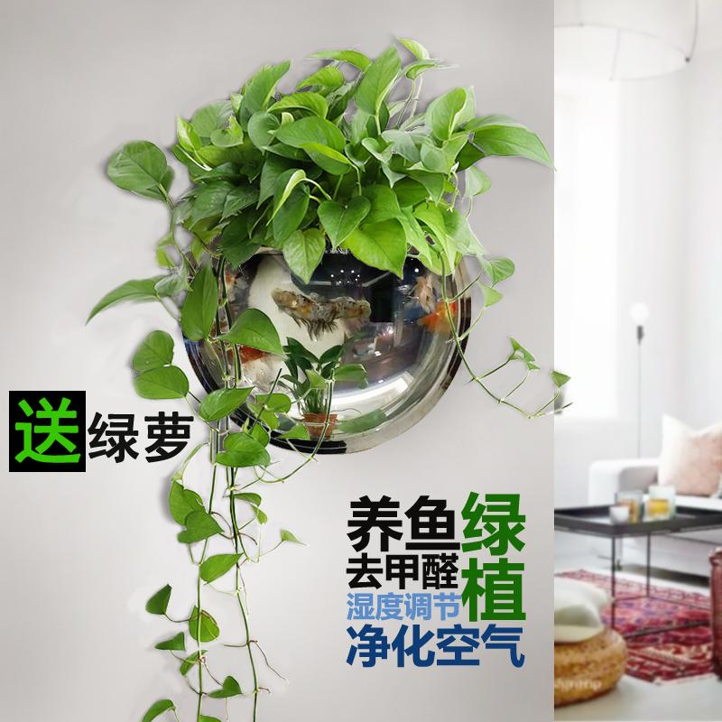 创意挂墙上装饰品 壁挂花盆水培 免打孔壁挂鱼缸绿萝垂吊悬挂件