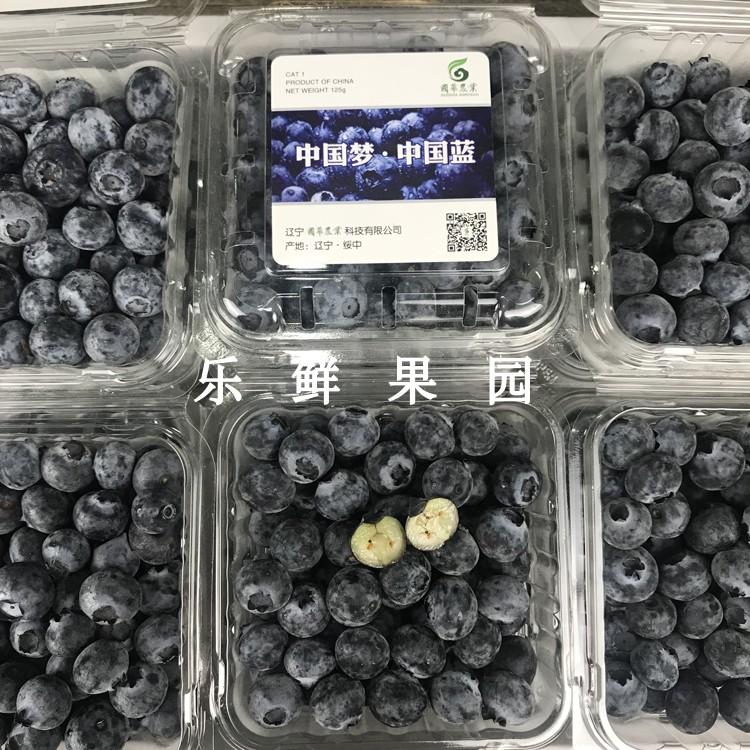现货云南蓝莓6盒新鲜山地蓝莓浆果精选蓝莓鲜果孕妇水果发顺丰