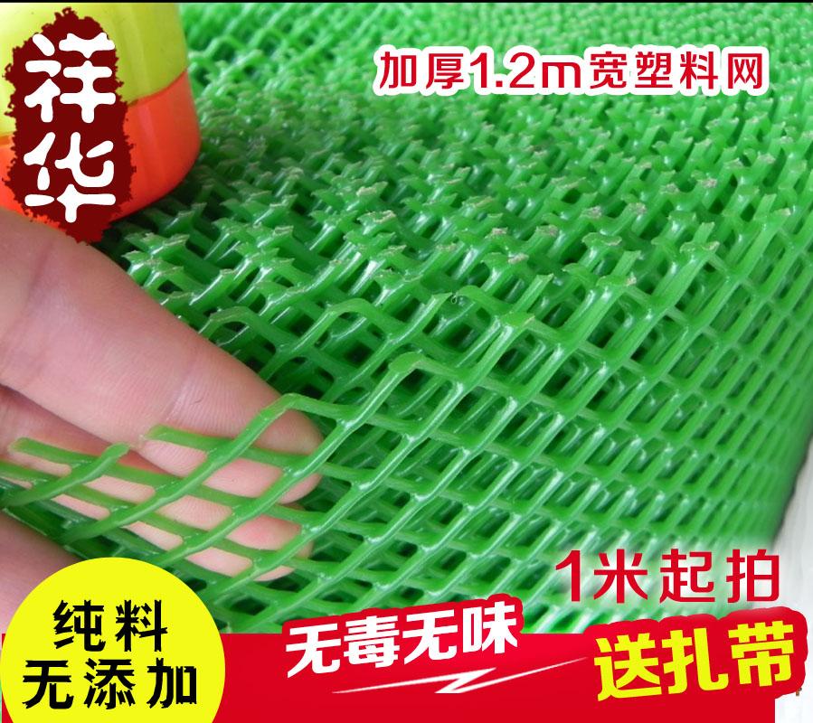 绿色胶网 阳台防护网 塑料网 养殖网 植物爬藤网 隔离网1.2m加厚