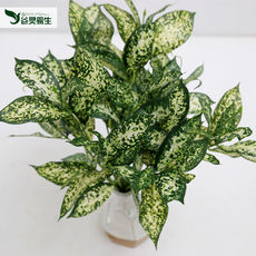 High-grade large-scale simulation plant artificial high-quality green simulation leaf plant wall