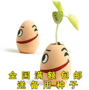 魔蛋魔豆魔蛋盆栽魔蛋+种子+土办公桌面迷你植物儿童毕业礼物