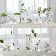 Handmade glass vase Creative living room decoration Flower arrangement transparent water flower garden Home garden decoration