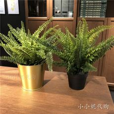 IKEA IKEA domestic purchasing FEJKA Fica artificial potted plants fern decorative simulation potted plants